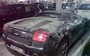 Imported Car Insurance