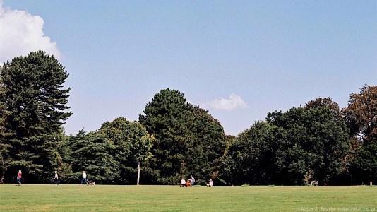 Calderstones Park grassy field