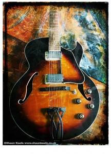 Shaun Keefe Guitart - Ibanez