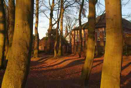 Woods, library and steeple, Alexandra Park, Edgeley, Stockport