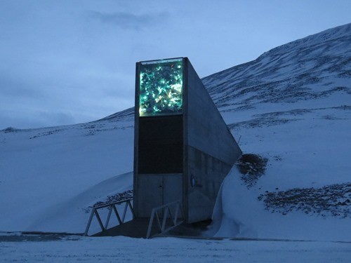 Svalbard: Kingdom of the Bears