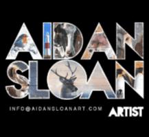 Aidan Sloan – Artist