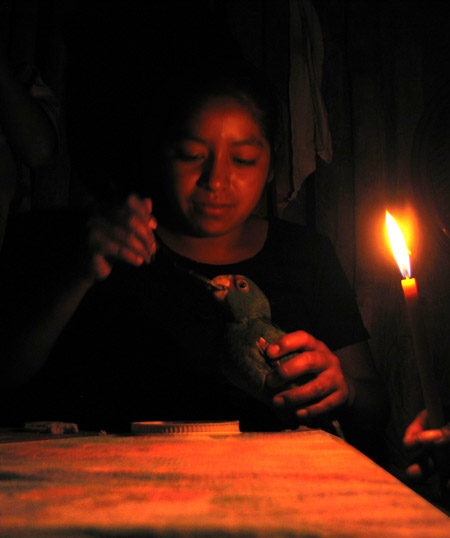 Wilma feeds her parrot Tomas by candlelight.