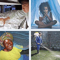 Long Lasting Insecticide Treated Bednets by Sumitomo Chemical