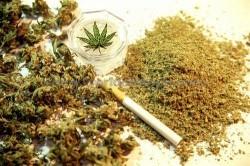 narkotika 1