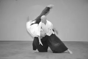 aikido chute projection