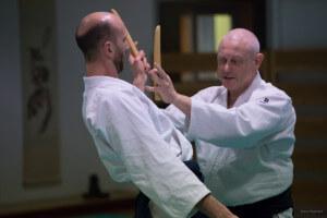 aikido-bras-5