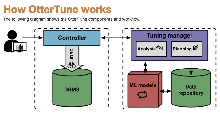 DBMS Machine Learning Tuning