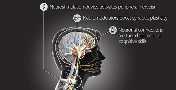 Pesquisadores militares estão hackeando o cérebro humano para que possamos aprender muito mais rápido.