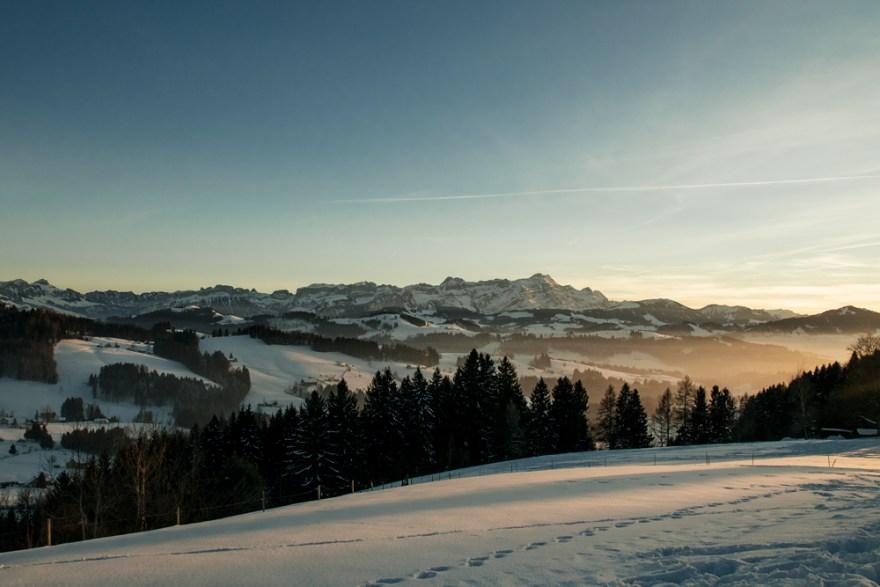Bailara elurtua (Snowy valley)