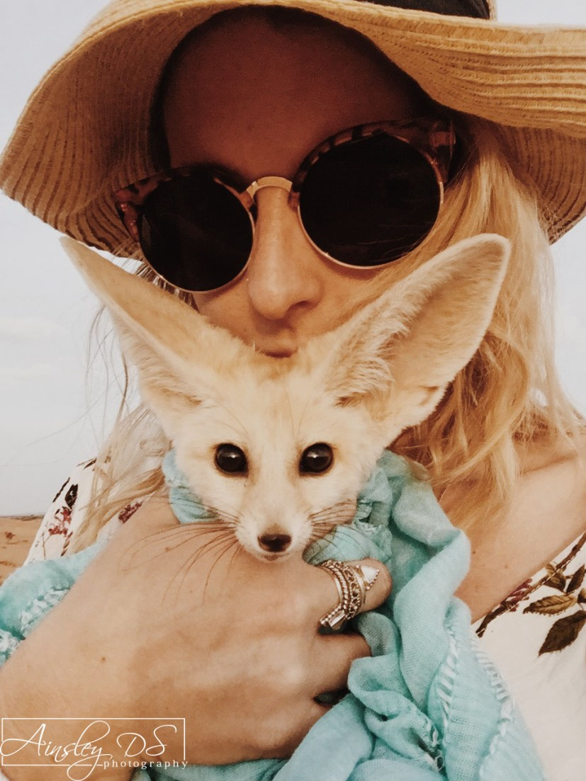 Rescued baby desert fox. Merzouga, The Sahara, travel blogger Ainsley About the world