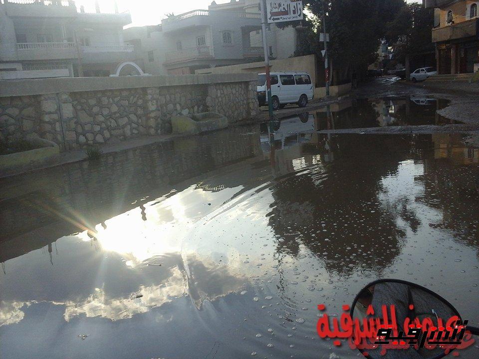 قرية السناجرة بأبوحماد تعوم علي بركة مياه الصرف الصحي