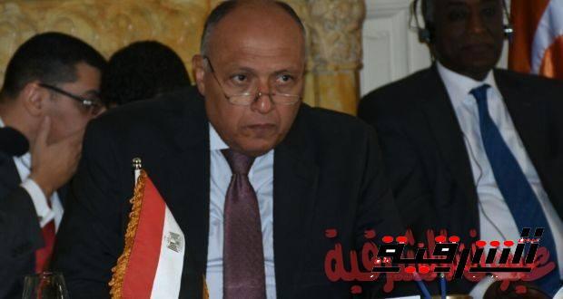 البيان الختامي للاجتماع الوزاري العاشر لدول جوار ليبيا المنعقد في القاهرة