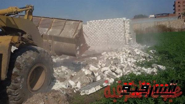 حملات نظافة وإزالة التعديات على الأراضي الزراعية بالشرقية