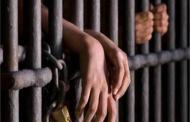 السجن المؤبد والمشدد 10 سنوات لمزارع وصديقيه قتلوا رقيب شرطة بالشرقية