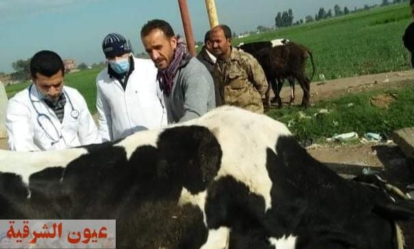 جامعة الزقازيق توجه قافلة طبية بيطرية إلي قرية المسلمية