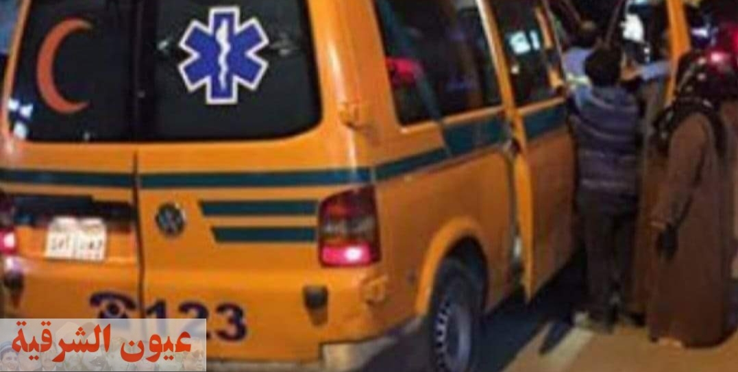 إصابة 10 عمال إثر إنقلاب سيارة ربع نقل بالصالحية الجديدة