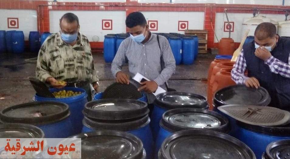 ضبط وإعدام أكثر من طن ونصف أغذية فاسدة وغلق ٣٦ منشأة غذائية مخالفة بالشرقية