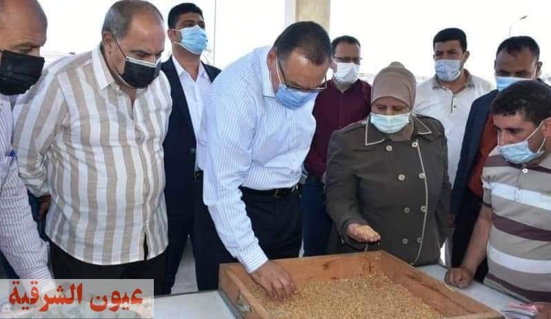 الشرقية تحتل المركز الأول على مستوى محافظات مصر في إنتاجية محصول القمح