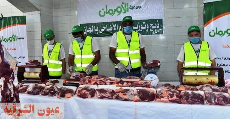 أورمان الشرقية تذبح ٣٠ عجل بمجزر أولاد صقر لتوزيعهم على المستحقين بقرى مراكز ومدن المحافظة