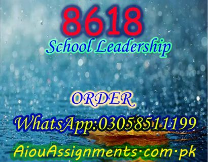 8618 School Leadership Bed Spring 2019