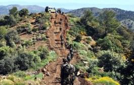 الجيش يوقف 8 عناصر دعم للجماعات الإرهابية.