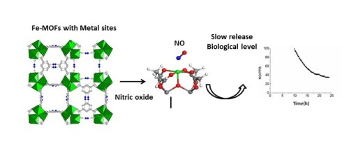 schematic representation of the use of porous iron carboxylate for the controled delivery of Nitric Oxide