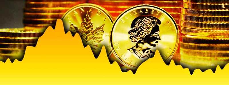 Kas yra aukso Spot kaina?