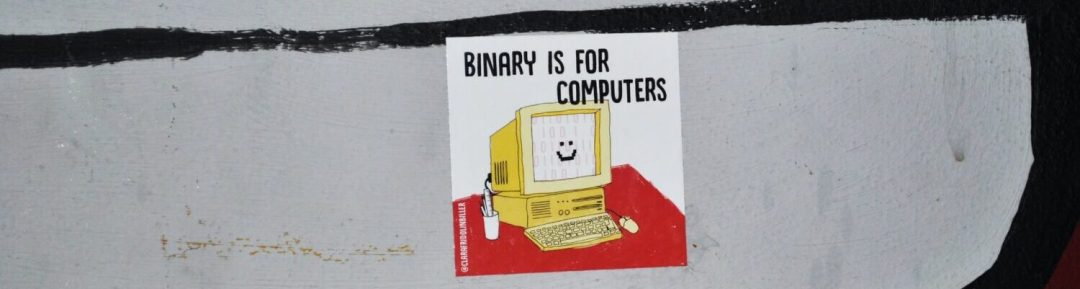 delia-giandeini-binary is for computer
