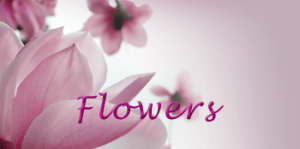 airance-flower-title