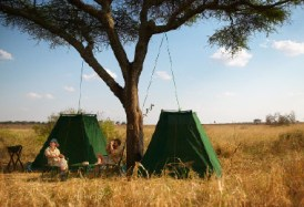 Oliver's Camp - fly camp on a walking safari