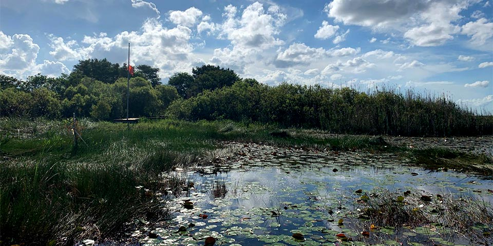 airboat tours 01
