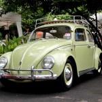 minggu volkswagen 4 - air cooled syndicate - simple bug beetle