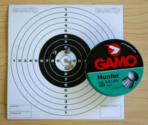 Original Gamo Hunters - Shot results at 10 yards with Gamo CO2 Extreme