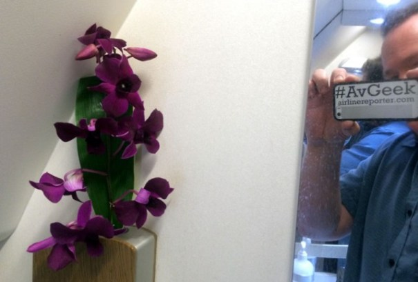 Small touches, like real flowers in the lavatory go a long way. Also, this I my Laviator shot.