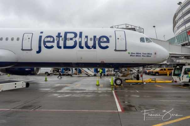 "JetBlue loves to name it's jets, too. This one is called ""One Mint, Two Mint, Blue Mint, You Mint."""
