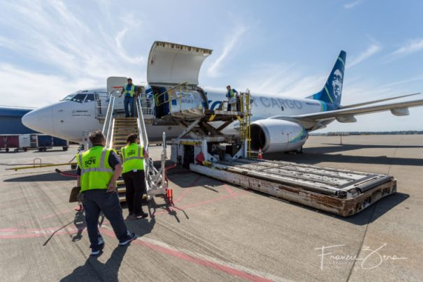 Loading cans via the big cargo door on a 737-700 freighter.