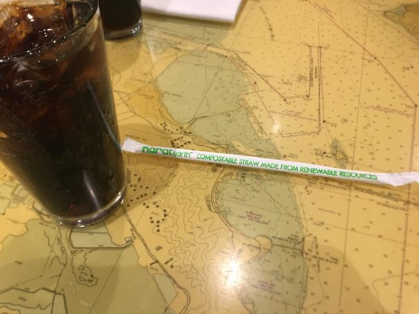 My paper straw that I got to try while flying through SFO last - Photo: David Parker Brown