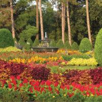 Clemens_Gardens