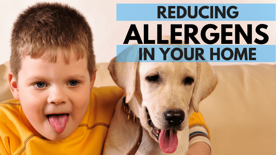 reducing indoor allergens with indoor air quality products