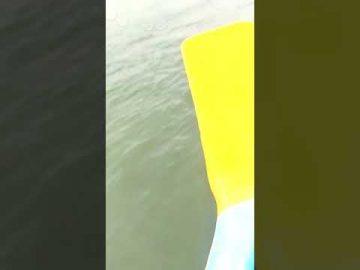Keberanian Polis Bantuan (veteran TUDM) menyelamatkan nyawa seorang wanita di laut.