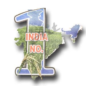 India No 1 Basmati Rice