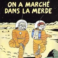 Albums de Tintin, parodie