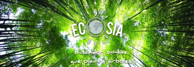Ecosia, tu nuevo buscador on-line que planta árboles | Photo by Kazuend | Unsplash