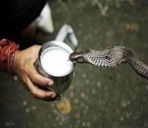 Myths & Facts of Snakes in Hindi