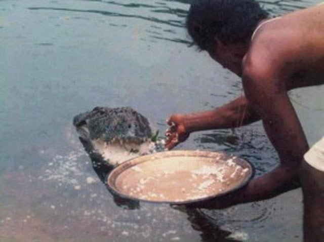 Ananthapura temple Crocodile Story
