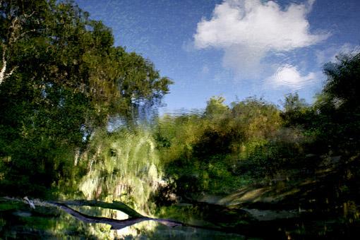 Reflexo em uma das nascentes do Rio Sucuri