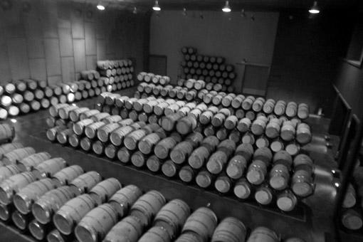 Visite a Bodega Torres perto de Barcelona