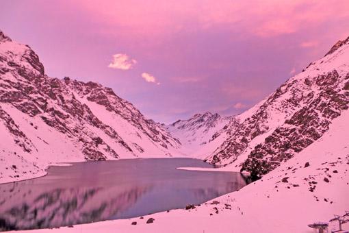 Neve rosa