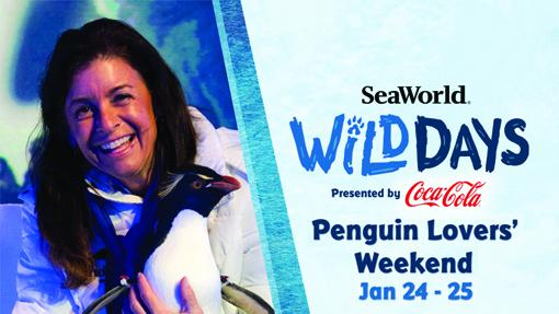 Sea World Wild Days